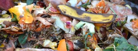 compost-709020_960_720